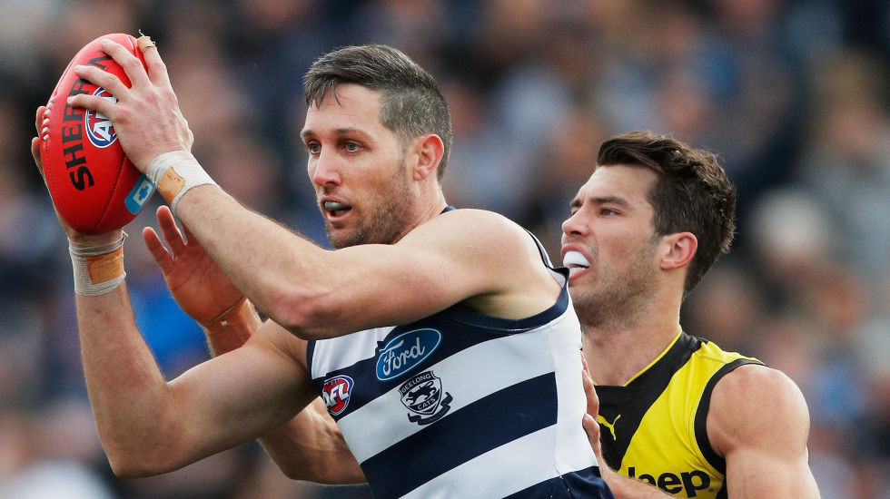 Match of the Day: Cats' support cast answer the call